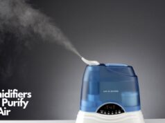 Humidifiers Also Purify the Air