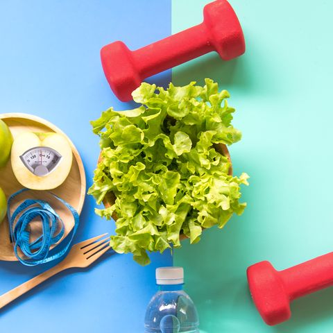Diet Program must include all healthy