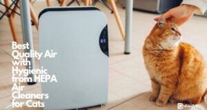 Best Quality Air with Hygienic from HEPA Air Cleaners for Cats