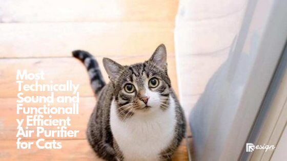 Most Technically Sound and Functionally Efficient Air Purifier for Cats